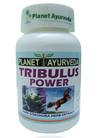 Tribulus Power