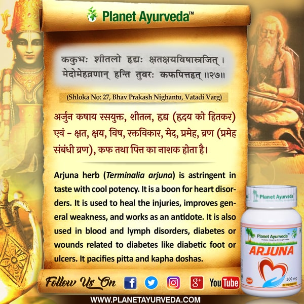 Classical Reference of Arjuna