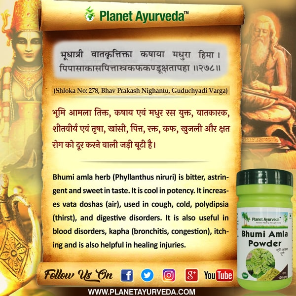 Classical Reference of Bhumi Amla